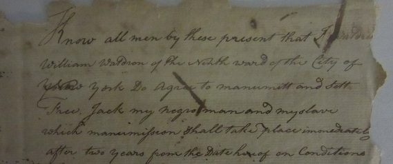 Detail of a manumission document from the archives of the Morris-Jumel Mansion.
